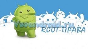 root_